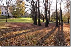 autumnshadows