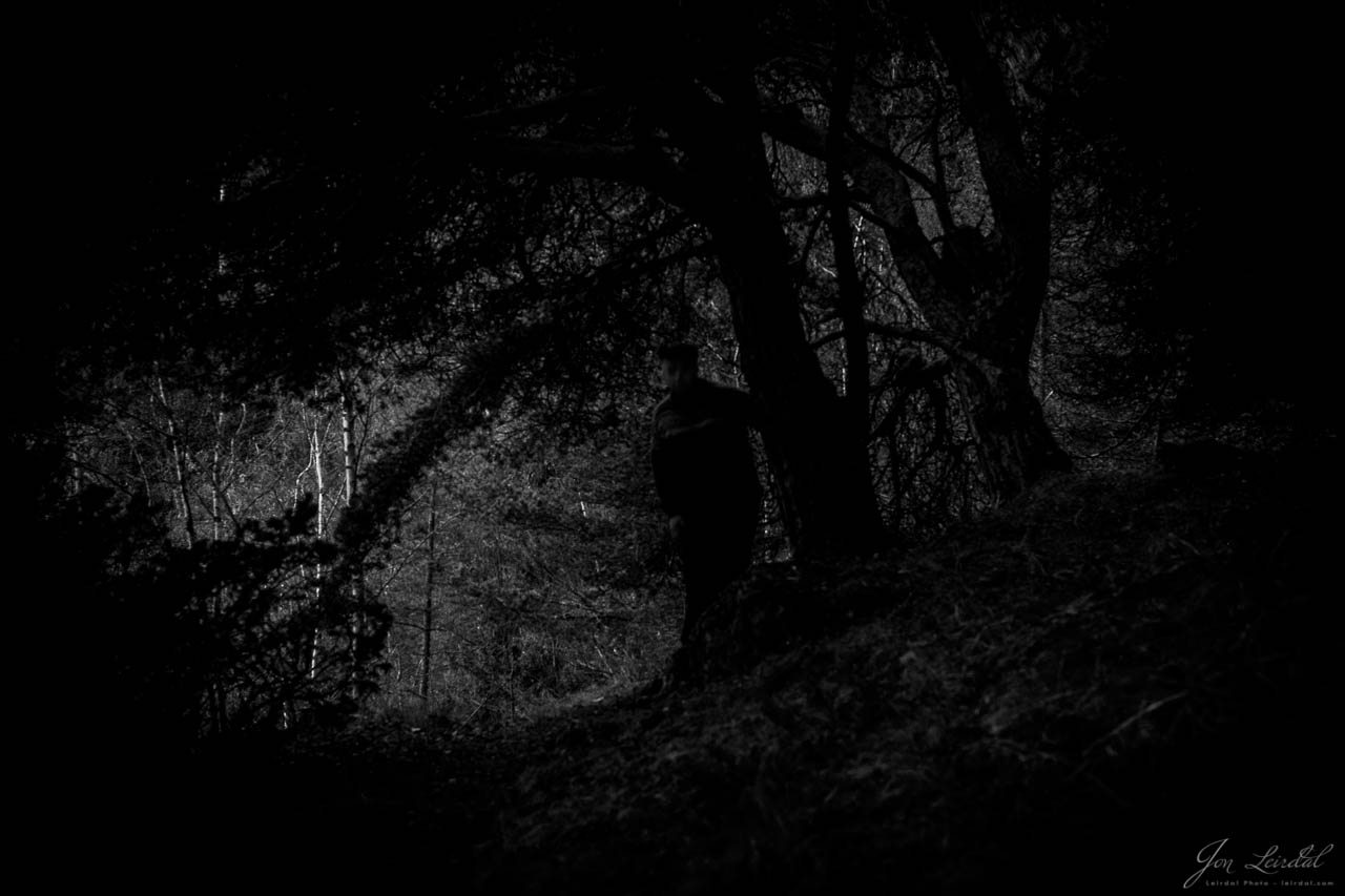 Who is lurking in the woods